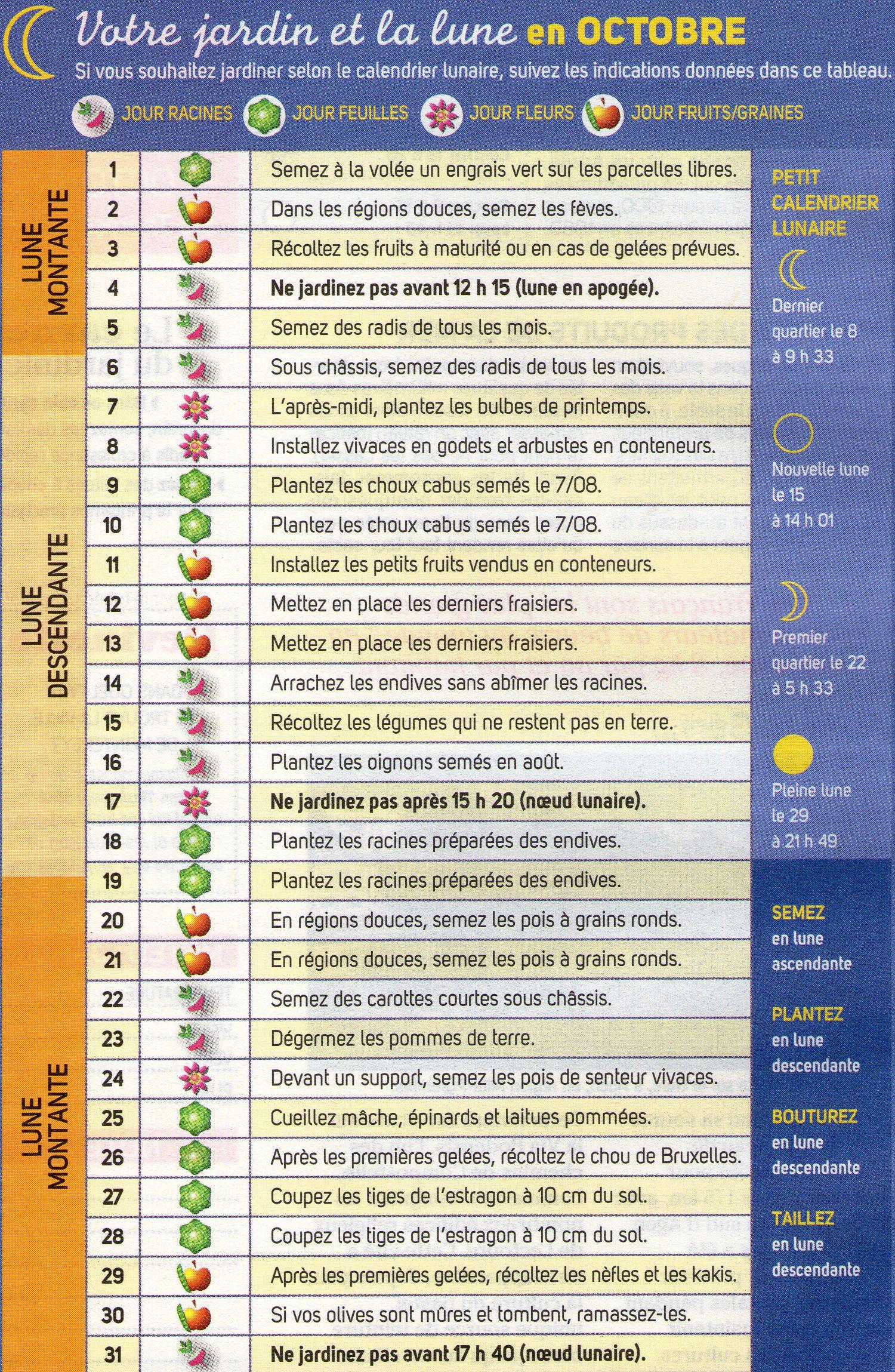 Votre jardin et la lune en octobre trucs et conseils colos for Jardin lune octobre 2015